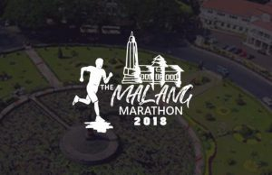 Logo The Malang Marathon